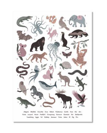 Djurens ABC Poster 50x70 cm, Åsa Holmberg