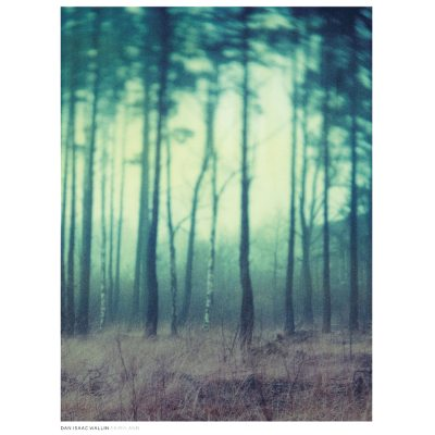 Fairyland poster