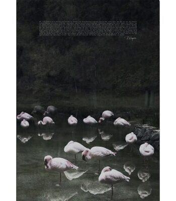 Femte Elementet poster, 50x70