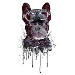 Poster Hund
