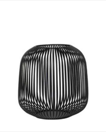 LITO Lanterna, Medium